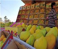 «الزراعة»: أضرار المانجو بالإسماعيلية لن تكون مؤثرة على السوق بشكل كبير