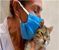 الحيوانات يمكن أن تصاب بكورونا من خلال النوم على سرير المصاب