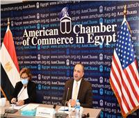 التخطيط : تحديث رؤية مصر 2030 مرت بعدة خطوات