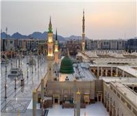 عالم أزهرى : المدينة المنورة أقيمت على العدل والمساواة والرحمة