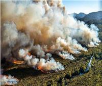 قبرص تطلب مساعدة الاتحاد الأوروبي فى إخماد حريق الغابات