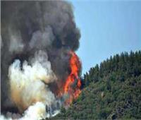 رويترز: وفاة 4 مصريين في حرائق غابات بقبرص