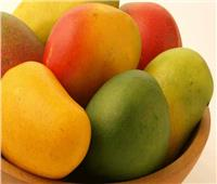 «الزراعة»: جميع المنتجات المصرية تشهد طفرة كبيرة وملحوظة فى التطور