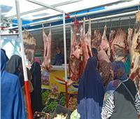 منافذ«أمان» تواصل طرح السلع ولحوم عيد الأضحي بتخفيضات كبرى بالمحافظات