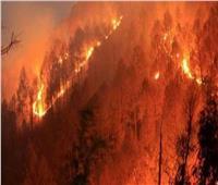 السيطرة على حريق الغابات الهائل في قبرص بعد يومين على اندلاعه