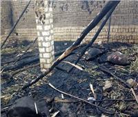 نفوق عدد من المواشي والطيور في حريق داخل حوش بقنا
