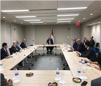 شكري يلتقي باللجنة العربية المعنية بملف سد النهضة مع مجلس الأمن