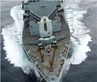 البحرية البريطانية تصُم الدلافين بانفجارات هائلة تحت الماء