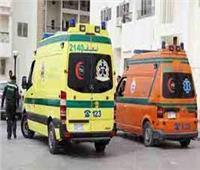 إصابة شخصين فى تصادم سيارتهم بـ«جمل» في محور الضبعة