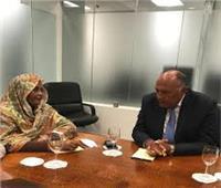 مصر والسودان يتخذان موقفا مشتركا من الملء الثاني لسد النهضة
