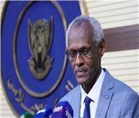 وزير الري السوداني يشارك في جلسة مجلس الأمن حول سد النهضة