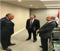 «شكري» يلتقي مندوبي روسيا والصين في مجلس الأمن