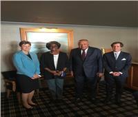 وزير الخارجية يلتقي مندوبي فرنسا وبريطانيا والولايات المتحدة بمجلس الأمن