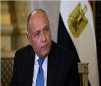 الوفد المصري يقدم إحاطة لمجلس الأمن حول موقف مصر بشأن سد النهضة