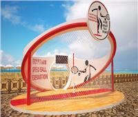 حل مجلس إدارة اتحاد كرة السرعة وشطب رئيسه