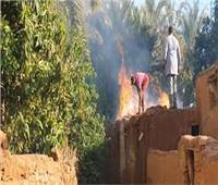 المعمل الجنائي يعاين موقع حريق مزرعة تسبب في نفوق 145 رأس ماشية