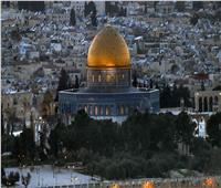 مفتي القدس يستنكر اعتداءات الاحتلال في يافا