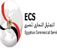 لقاءات بين ممثلي الشركات المصرية والسنغالية في القطاعات الصناعية