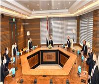 السيسي يطلع على مشروع إقامة مجمع للبتروكيماويات في المنطقة الاقتصادية لمحور قناة السويس