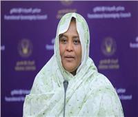 السودان: لا يوجد خلافات مع مصر.. ومتفائلون بمجلس الأمن