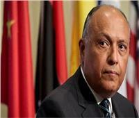 شكري: يجب التوصل لاتفاق قانوني ملزم دون الإضرار بمصر والسودان