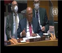 شكري: لا نمتلك أي ضمانات لسلامة سد النهضة بسبب تعنت إثيوبيا