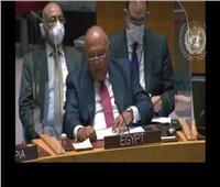 شكري: مصر ستبذل كل الجهود للوصول لاتفاق يعزز السلام