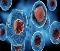 «الإفتاء» توضح حكم استخدام تقنية الخلايا الجذعية في العلاج الطبي