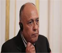 شكري: ما طرحه الجانب الإثيوبي في مجلس الأمن هو «تكرار إدعاء المظلومية»