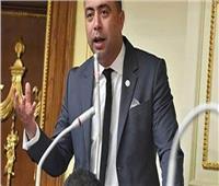 «برلماني» يتقدم بطلب إحاطة حول «حماية المستثمر من المخاطر غير التجارية»