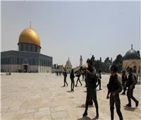 139 شرطيًا إسرائيليًا يقتحمون ساحات المسجد الأقصى