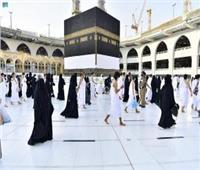 السعودية.. تكليف 135 من العلماء لمرافقة الحجاج أثناء أداء المناسك