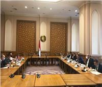 انعقاد مُشاورات سياسية بين مصر والمجر لتعزيز التعاون الاستثماري