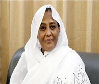 السودان نتوقع إصدار مجلس الأمن تعليمات صارمة لاستئناف مفاوضات سد النهضة