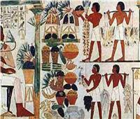 مدير متحف الآثار بمكتبة الإسكندرية: الفواكه احتلت منزلة كبيرة عند الفراعنة