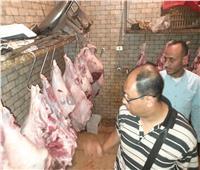 ضبط 39 طن لحوم مجمدة مجهولة المصدر في حملة تموينية بالإسكندرية