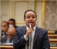 برلماني سابق: المواطن المصري في وجدان الرئيس والدولة