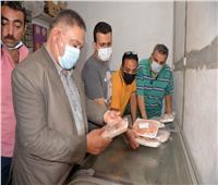 تحرير 494 محضر مخالفة على منشآت غذائية في الدقهلية