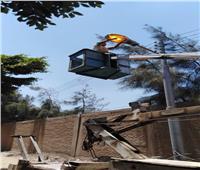 حملة إنارة ونظافة في منشأة القناطر بالجيزة   صور
