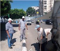 حملات لرفع تراكمات القمامةوالنظافة والتجميل بالمنصورة استعدادا للعيد