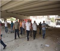 محافظ الجيزة يتابع أعمال التطوير بشوارع البحر الأعظم وخاتم المرسلين   صور