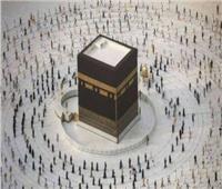 السعودية تحارب البعوض قبل انطلاق موسم الحج