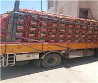 مخزون السلع الغذائية واسطوانات البوتاجاز كاف بمدن ومراكز مطروح | صور