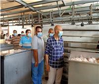 غلق مجزر للدواجن وإعدام 20 طنا من الأغذية بالشرقية