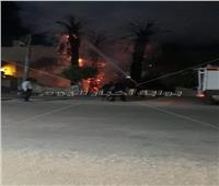 نيابة المنيا تعاين موقع حريق نشب في أشجار ونخيل أمام مستشفى بني مزار