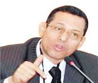 د. أيمن سلامة لـ«آخرساعة»:«مجلس الأمن» ليس نهاية المطاف فى أزمة سد النهضة