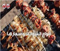 قبل أيام من «عيد اللحمة».. تعرف على أسعار الشوايات والأسياخ| فيديو