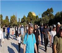 الرئاسة الفلسطينية تدين اقتحام المستوطنين للمسجد الأقصى