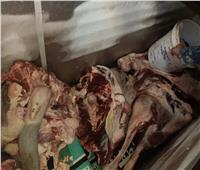 394 محضر مخالفة بالدقهلية وإعدام 677 كيلو مواد غذائية فاسدة
