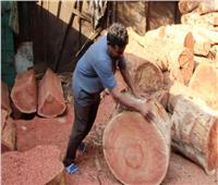 تصنيع «أورمة» الجزار.. أصول التقطيع تبدأ من «الخشبة» | فيديو